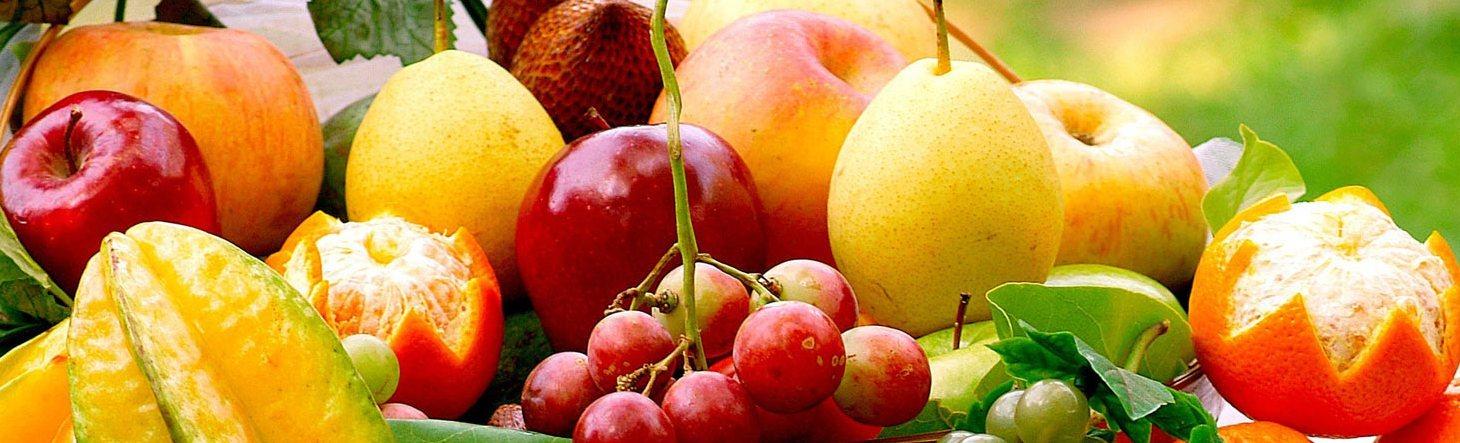 23 Fruit-Freshfg