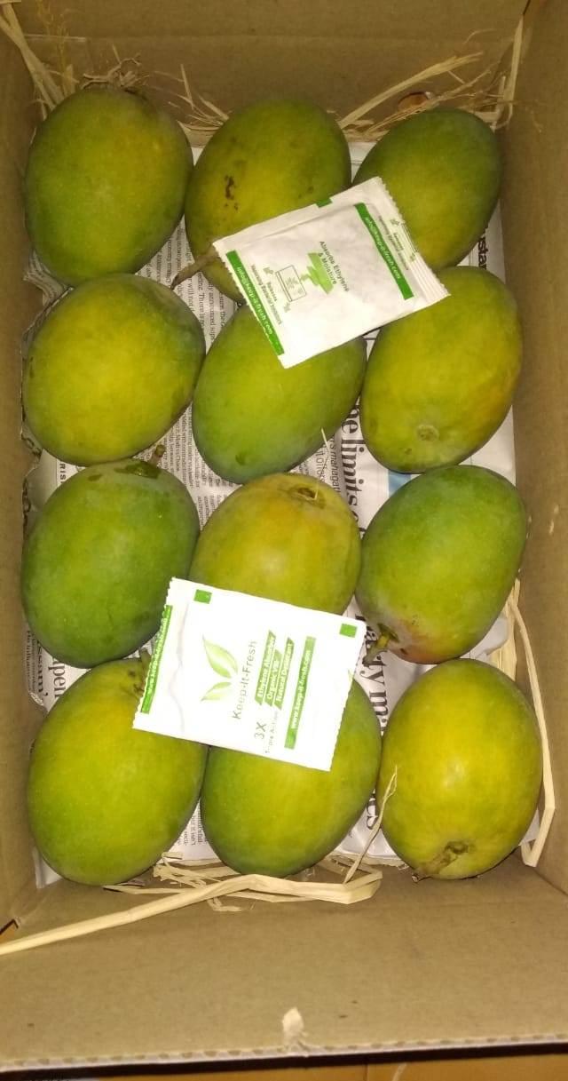 kif sachet mangoes (9)